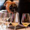 Sei pronto all'inizio della Wine Week?